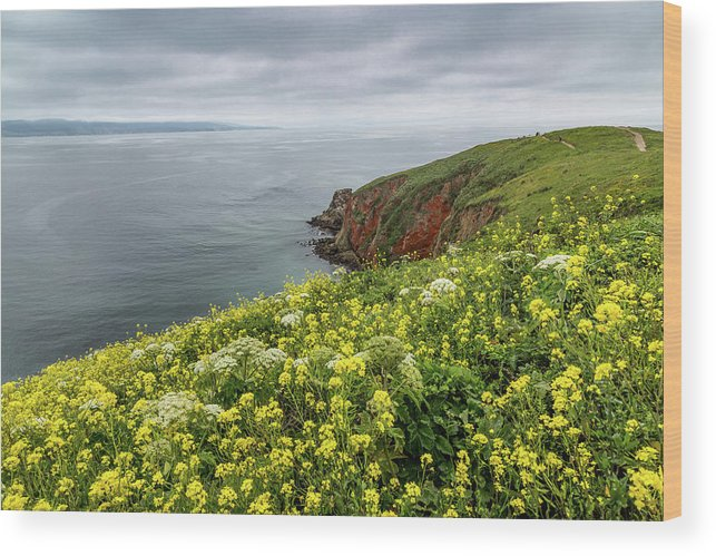 Boat Wood Print featuring the photograph Spring At Chimney Rock by Joe Azevedo