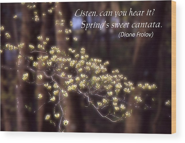 Spring Wood Print featuring the photograph Spring Blossoms Poster by Roger Soule