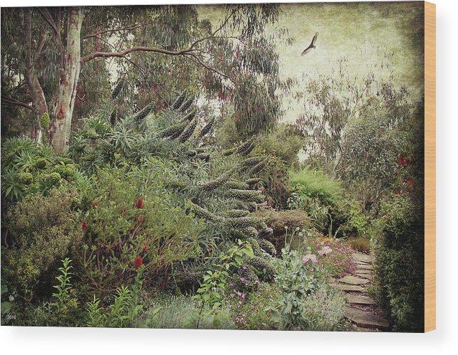Echium Wood Print featuring the digital art Springtime Spires by Margaret Hormann Bfa