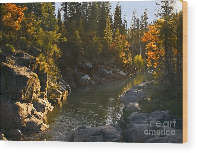 California Landscape Art Wood Print featuring the painting Stanislaus Sunset Larry Darnell by Larry Darnell
