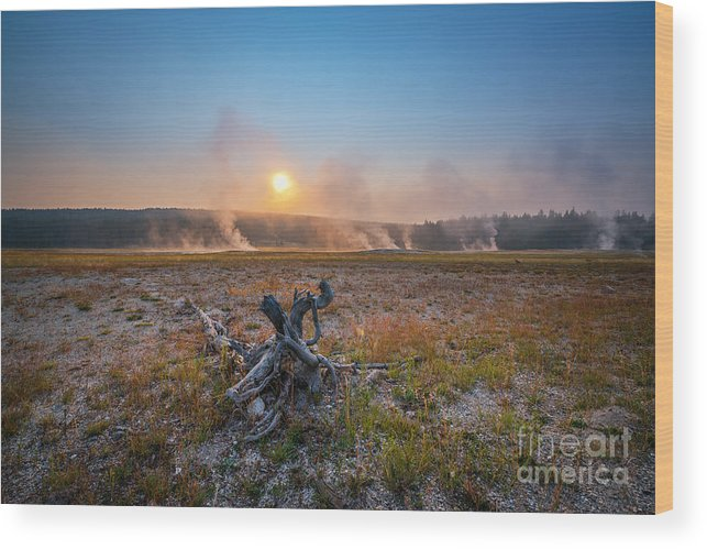 Sunrise Wood Print featuring the photograph Steamy Sunrise In Yellowstone by Michael Ver Sprill