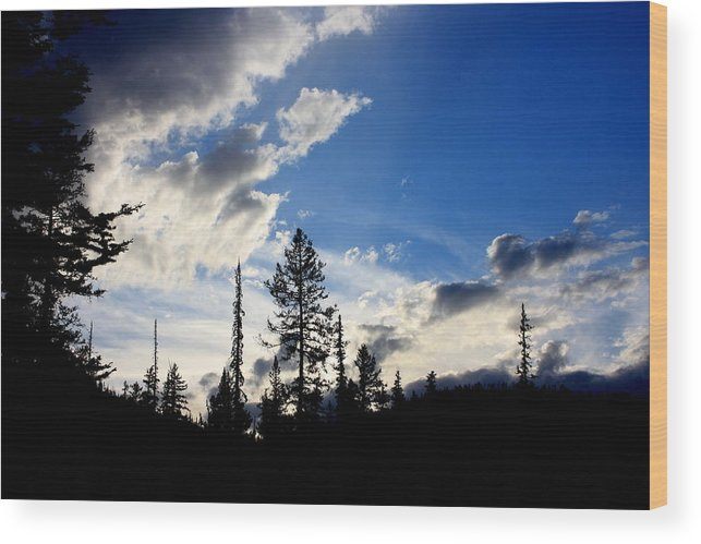 Nature Wood Print featuring the photograph Storm Approaching by Joseph Peterson