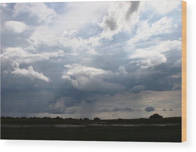 Botswana Wood Print featuring the photograph Storm Clouds by Linda Russell