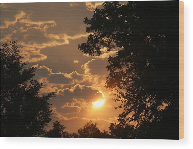 Sunset Wood Print featuring the photograph Summer Sunset 2 by Liz Vernand