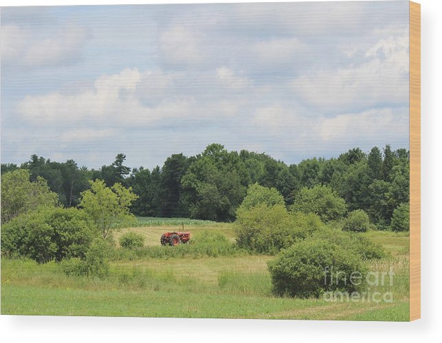 Summer Wood Print featuring the photograph Summer Tractor In Field Corinna Maine by Colleen Snow