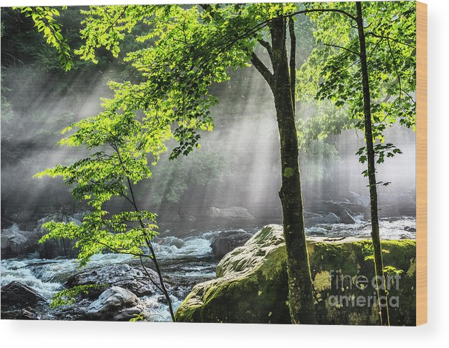 Williams River Wood Print featuring the photograph Sun Rays On Williams River by Thomas R Fletcher