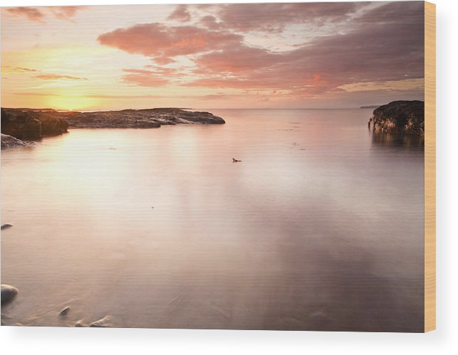 Sundown Wood Print featuring the photograph Sundown by Ann O Connell