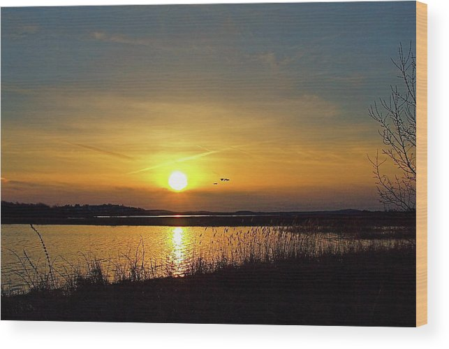 Water Wood Print featuring the photograph Sunset At Parker River National Wildlife Refuge by Peter Gray