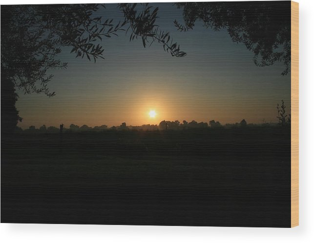Sunset Wood Print featuring the photograph Sunset On The Farm by Joshua Sunday