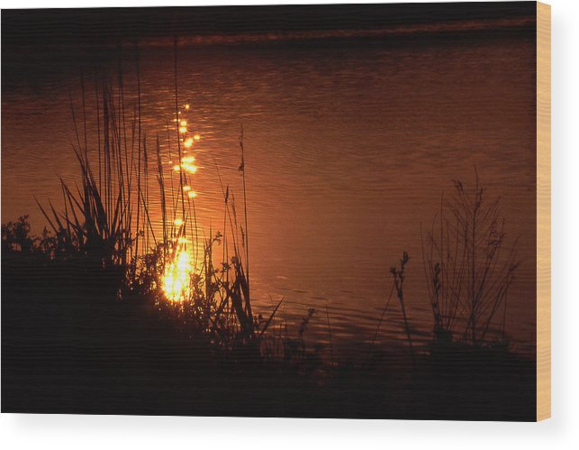 Sunset Wood Print featuring the photograph Sunset On The Water by Barry Shaffer