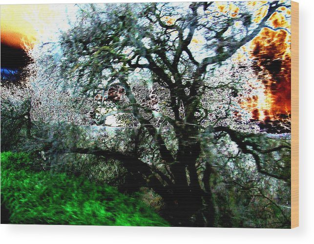 Abstract Wood Print featuring the painting Sunset by Tim Tanis