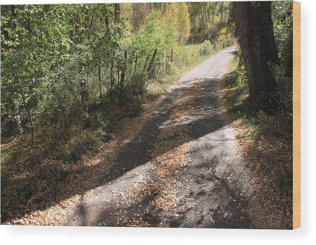 Road Wood Print featuring the photograph Take Me Home by Denise Romaine Photography