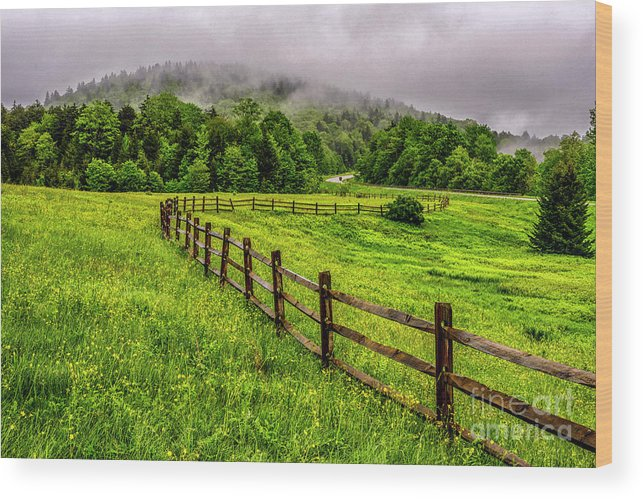 Spring Wood Print featuring the photograph Tea Creek Meadow And Buttercups by Thomas R Fletcher