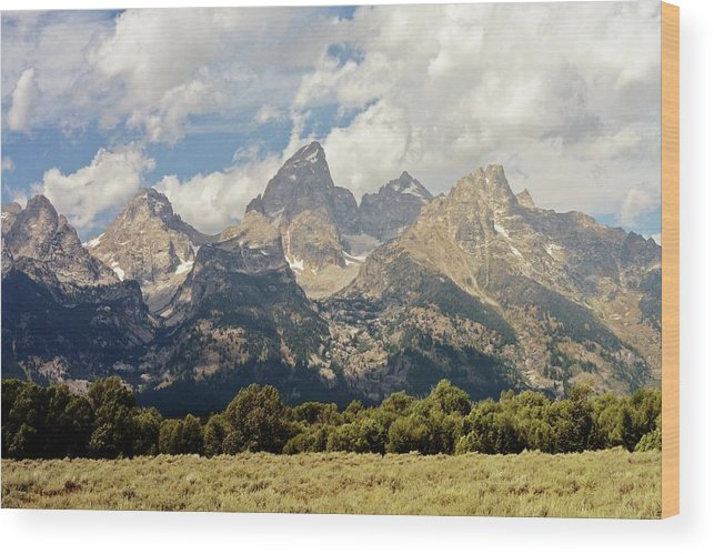 Grand Teton National Park Wood Print featuring the photograph Tetons Grande 2 by Marty Koch