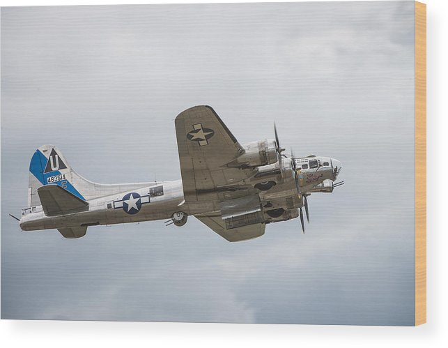 Airport Wood Print featuring the photograph The B-17 Bomber by Bill Cubitt