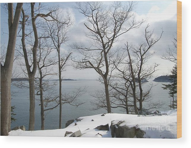 Water Wood Print featuring the photograph The Bay In Winter by Faith Harron Boudreau