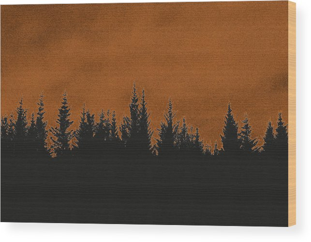 Forest Wood Print featuring the photograph The Dawn by Thomas M Pikolin