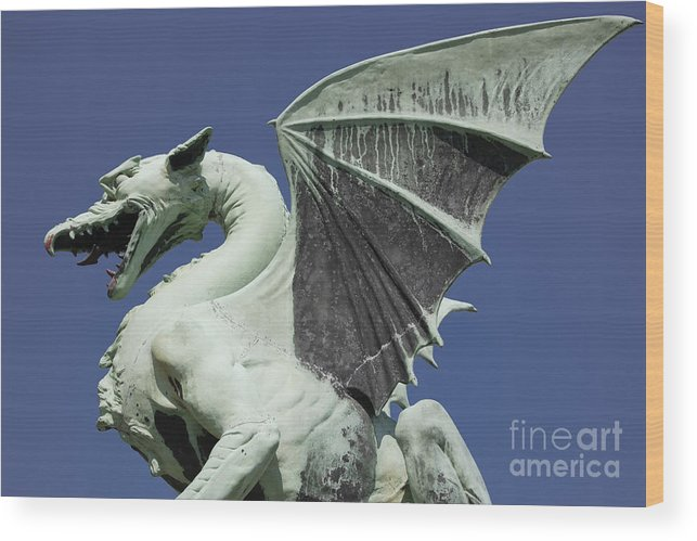 Dragon Wood Print featuring the photograph The Dragon by Steve Outram