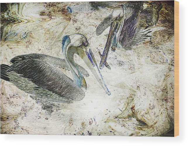 Pelicans Wood Print featuring the photograph The Fishing Hole by Yvonne Emerson