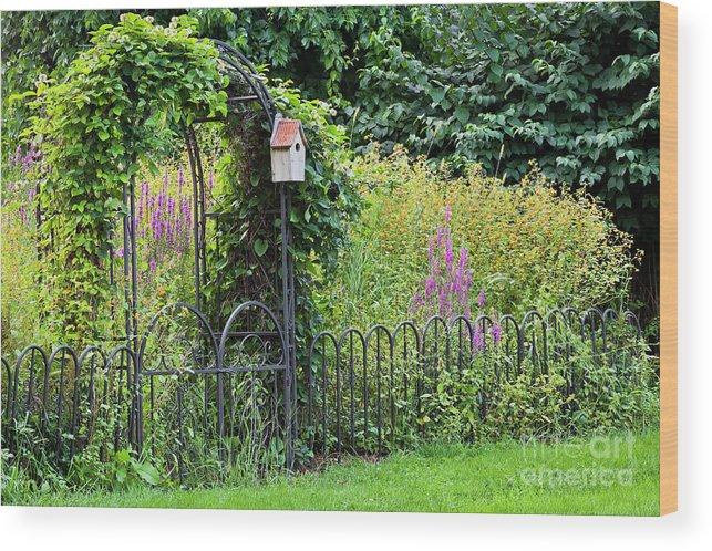 Summer Wood Print featuring the photograph The Forgotten Garden by Alan L Graham