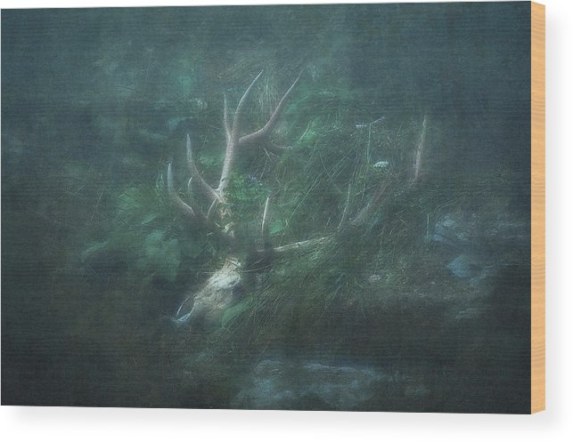 Wilderness Wood Print featuring the digital art The King Of Regrets by Will Jacoby Artwork