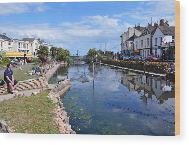Dawlish Wood Print featuring the photograph The Lawn by Andrea Everhard