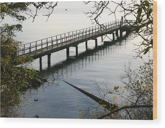 Water Wood Print featuring the photograph The Long Dock by Doug Johnson
