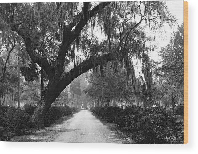 Bonaventure Cemetery Wood Print featuring the photograph The Road Home by Rick Wilkerson