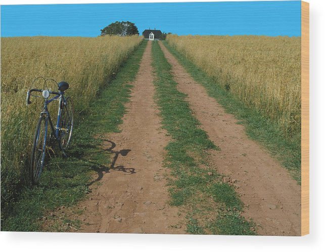 Dirt Wood Print featuring the photograph The Road To Home by Carl Purcell