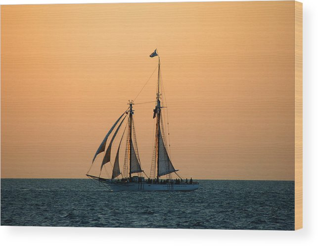 Boat Wood Print featuring the photograph The Schooner America by Susanne Van Hulst