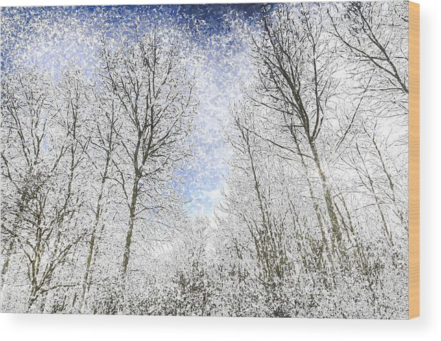 Snow Wood Print featuring the photograph The Snow Forest Art by David Pyatt