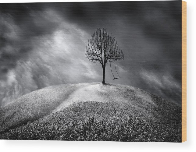 Single Swing Hanging Tree Wood Print featuring the photograph The Swing That Swings Alone by Gray Artus