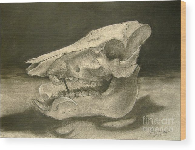 Pig Skull Wood Print featuring the drawing This Little Piggy by Julianna Ziegler