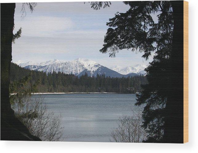 Alaska Wood Print featuring the photograph Thunder Mountain by Jeffrey Ober