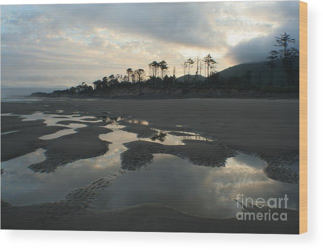 Oregon Wood Print featuring the photograph Tidepools At Dawn by Idaho Scenic Images Linda Lantzy