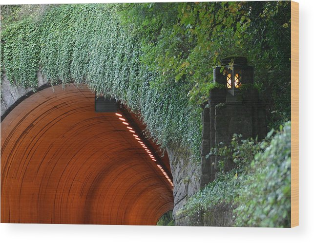 Tooth Rock Wood Print featuring the photograph Tooth Rock Tunnel by Wendy Raatz Photography