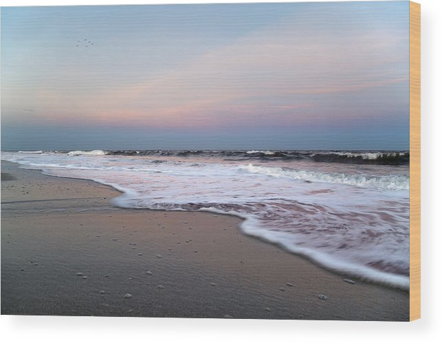 Topsail Wood Print featuring the photograph Topsail Dome-esticated Evening by Betsy Knapp