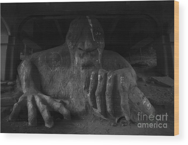 Aurora Wood Print featuring the photograph Troll Under Bridge by Jim Corwin