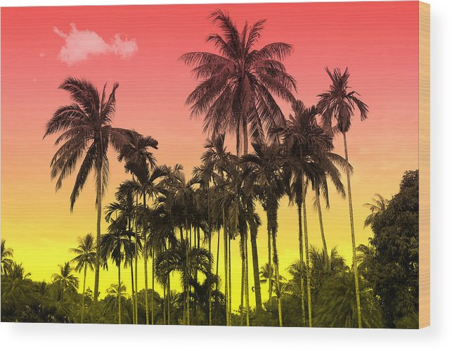 Wood Print featuring the photograph Tropical 9 by Mark Ashkenazi