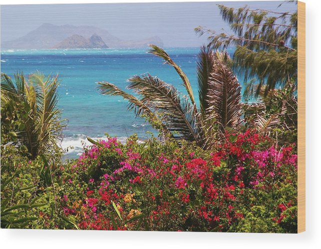 Tropical Wood Print featuring the photograph Tropical Paradise by Mitch Cat