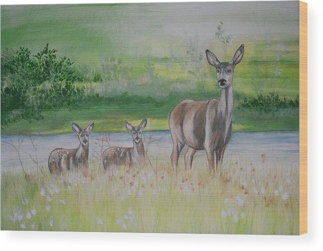 Whitetail Deer Wood Print featuring the painting Twins In The Quabin by Debra Sandstrom