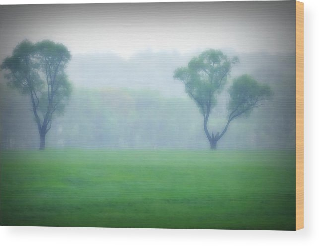 Trees Wood Print featuring the photograph Two Trees In The Mist by Bill Cannon
