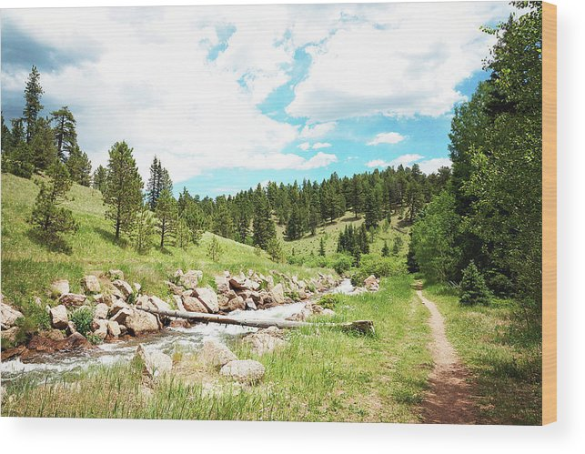 Creek Wood Print featuring the photograph Upcreek by Megan Swormstedt