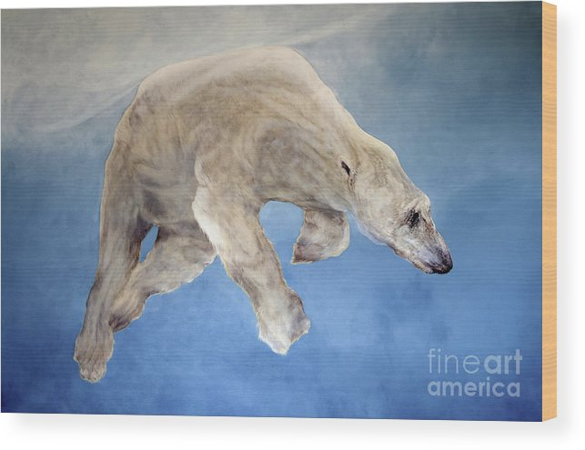 Polar Wood Print featuring the painting Ursus Maritimus Two by Odile Kidd