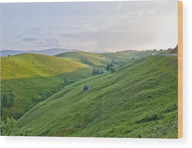 Landscape Wood Print featuring the photograph Valari 2 by Adrian Bud