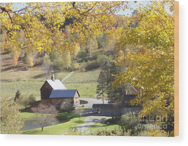 Vermont Foliage Wood Print featuring the photograph Vermont Beauty by Lyn Vic