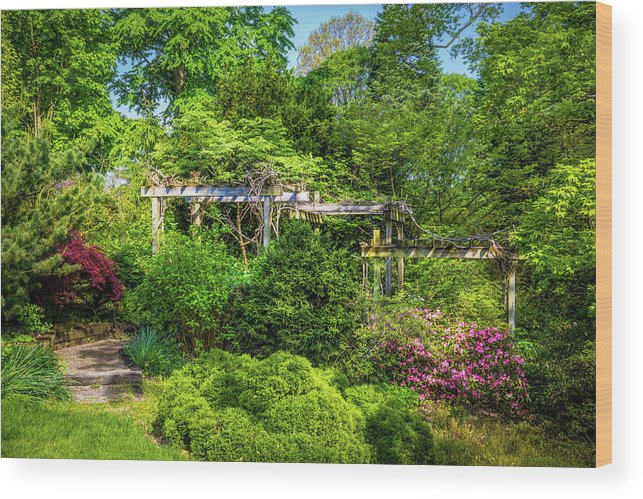 Dawes Wood Print featuring the photograph Vibrant Landscape Greenery by Tom Mc Nemar