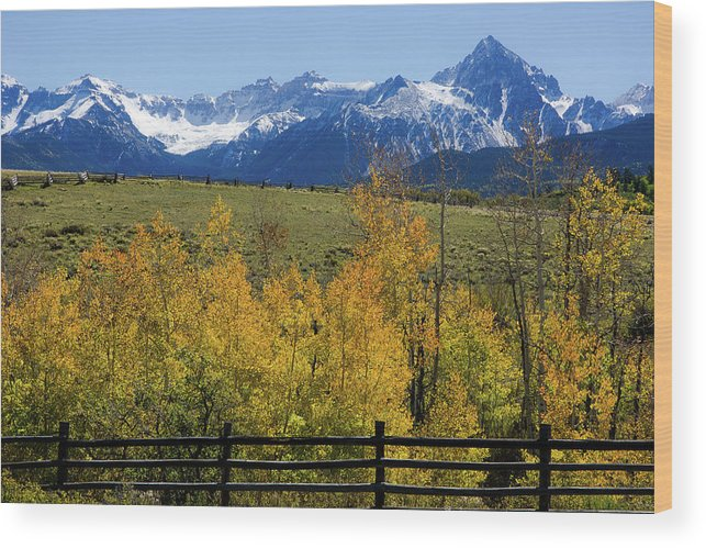 Landscapes Wood Print featuring the photograph View From Hwy 62, Ouray County, Co by John Bartelt