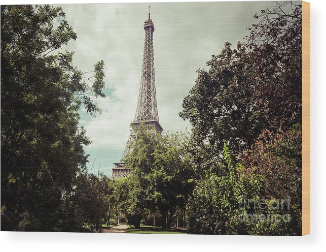 Architecture Wood Print featuring the photograph Vintage Paris Landscape by Paul Warburton