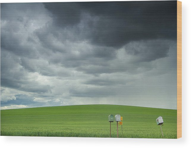 Palouse Rolling Fields Wood Print featuring the photograph Waiting For Something by Kunal Mehra